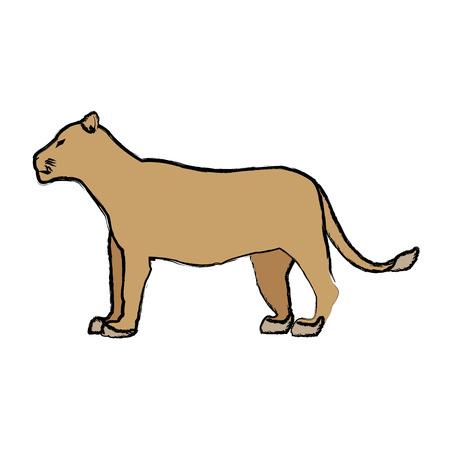 ferocious: female lion african animal courageous creature vector illustration Illustration