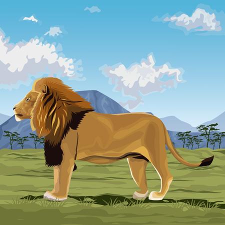 colorful scene african landscape with lion standing vector illustration