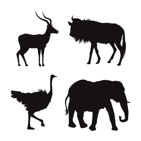 emu: white background with black silhouette of wild african animals vector illustration