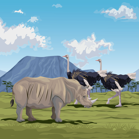 color scene african landscape with rhino and herd of ostrich vector illustration