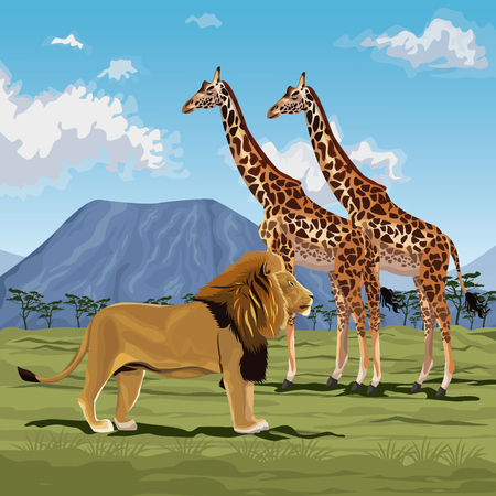color scene african landscape with lion and pair of giraffes vector illustration Illustration