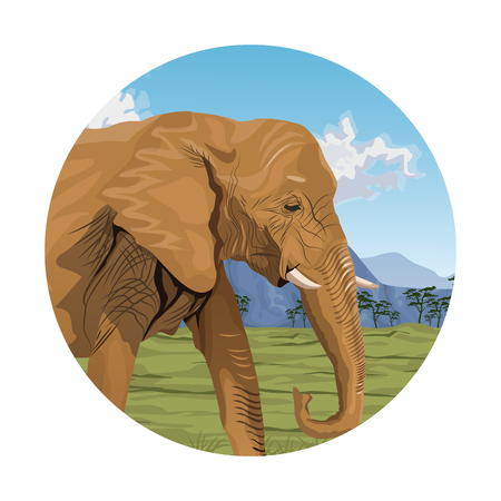 huge tree: circular frame with colorful scene african landscape with elephant closeup vector illustration