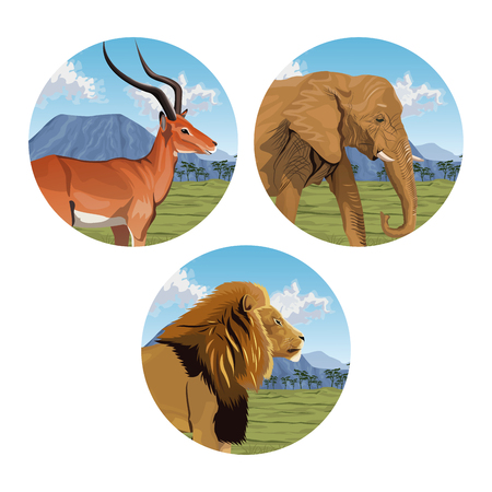 circular frame with set closeup colorful scene african landscape with wild animals vector illustration Illustration