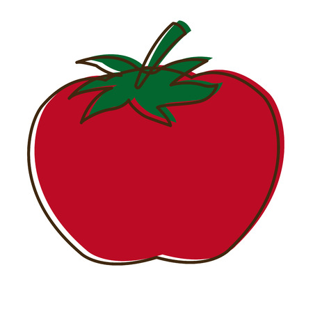 tomato vegetable from the farm organic food vector illustration