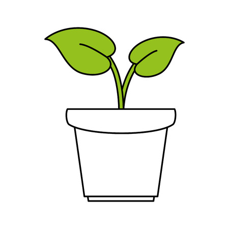 hint: Flat line plant with a hint of color over white background