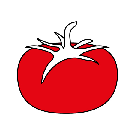 hint: Flat line tomato with a hint of color over white background Illustration