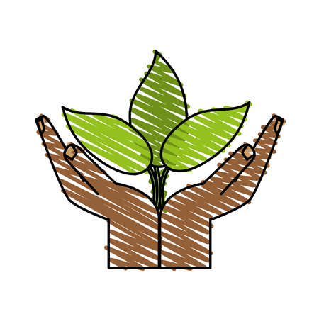 seeding: little plant seeding ecological icon vector illustration graphic design Illustration