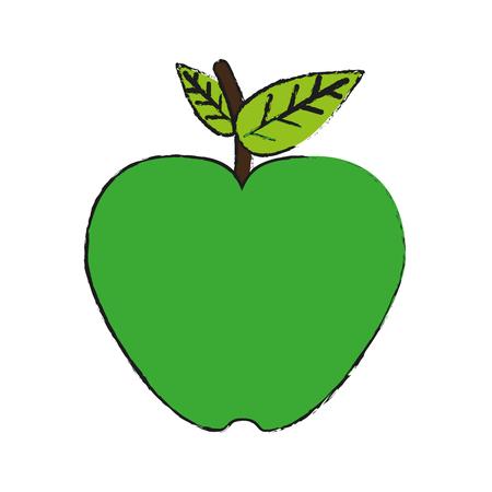 juicy sweet fresh fruit vector illustration graphic design
