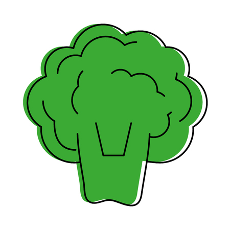 broccoli vegetable icon image vector illustration design  green color Illustration