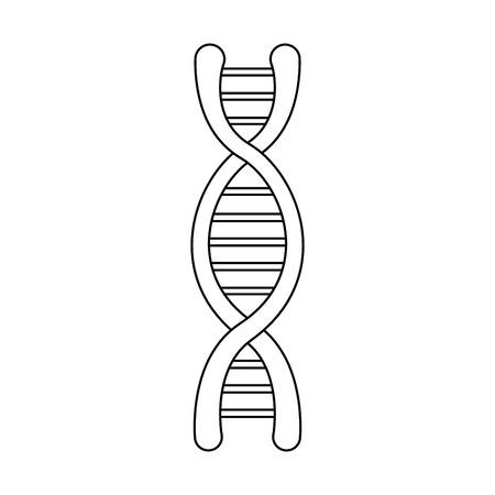 dna molecule structure science genetic structure vector illustration Illustration