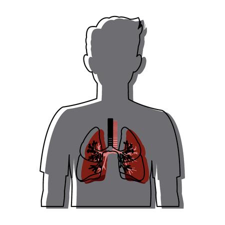 human silhouette respiratory system body anatomy vector illustration