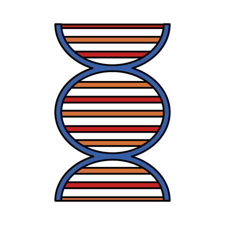 dna strand icon image vector illustration design