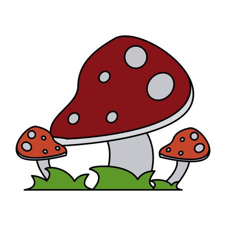 wild mushroom icon image vector illustration design
