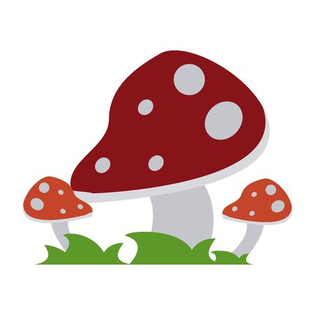 wild mushroom icon image vector illustration design