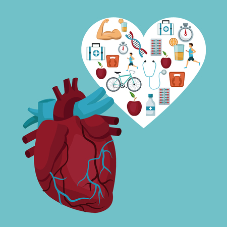 respiration: color background with heart organ with heart frame with icons health vector illustration