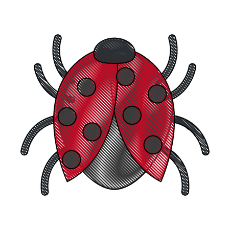 Bug sign icon for software bug error disinfection vector illustration Illustration