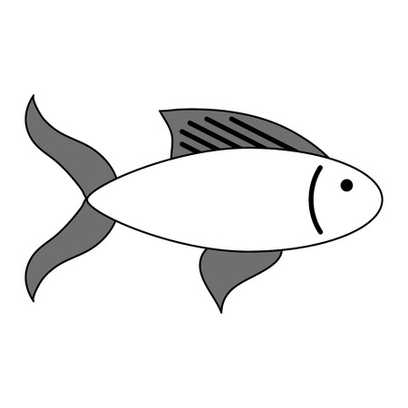 hint: Flat line fish with a hint of color over white background vector illustration Illustration