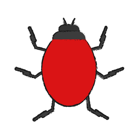 bug insect icon image vector illustration design Illustration