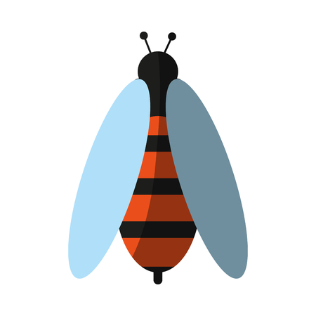 Bee insect icon image vector illustration design.