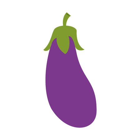 eggplant or aubergine vegetable icon image vector illustration design