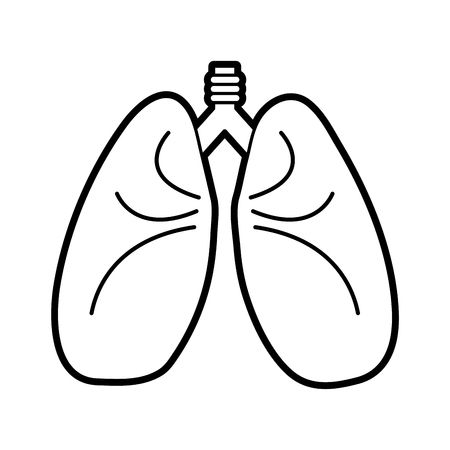 Flat line uncolored lungs over white background vector illustration Illustration