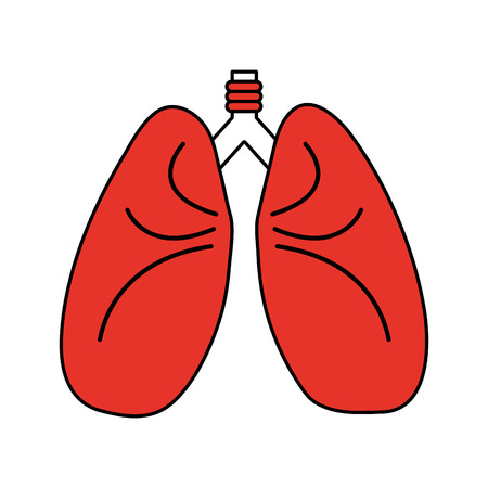 Flat line lungs with hint of color over white background vector illustration