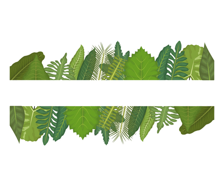 white background with linear edge decorative of green leaves vector illustration Illustration