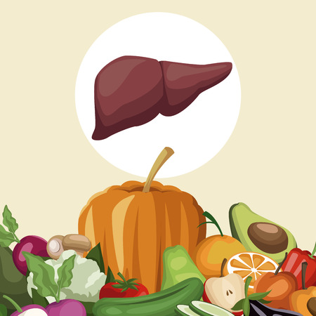 color background with border vegetables and fruits healthy food to liverorgan vector illustration