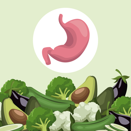 color background with border vegetables healthy food to stomach organ vector illustration