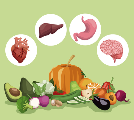 Color background with vegetables and fruits healthy food set and circular frame organs human body vector illustration