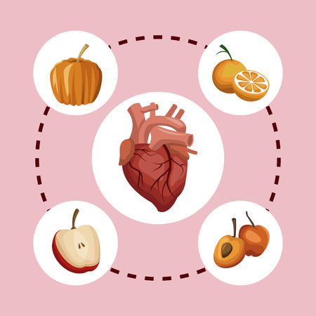 Color background circular frame with heart organ and pumpkin with fruits healthy food around vector illustration
