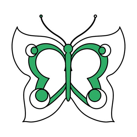 butterfly isolated: Butterfly of insect animal and nature theme Isolated design Vector illustration