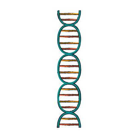 Dna of structure chromosome and science theme Isolated design Vector illustration