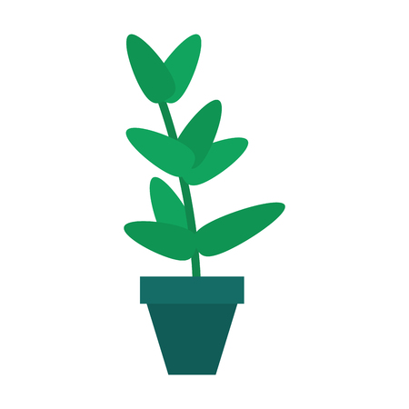 potted plant icon image vector illustration design