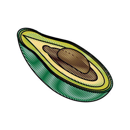 Avocado delicious vegetable icon vector illustration graphic design