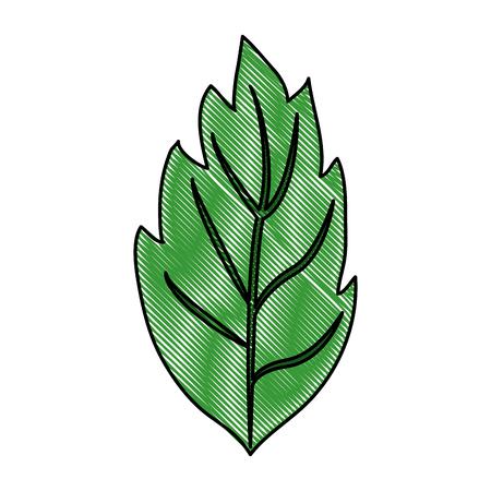 turismo ecologico: Leaves eco symbol icon vector illustration graphic design