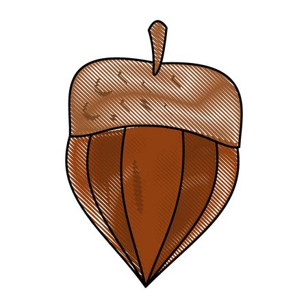 Noix snack naturel icône vector illustration design graphique