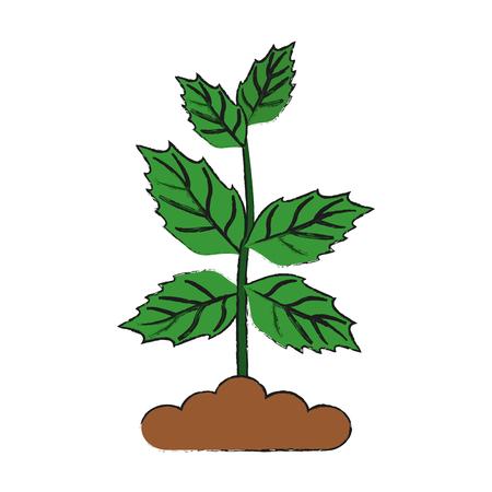 Leaves eco symbol icon vector illustration graphic design