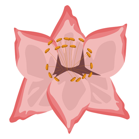 Beautiful decorative flowers icon vector illustration graphic design Illustration