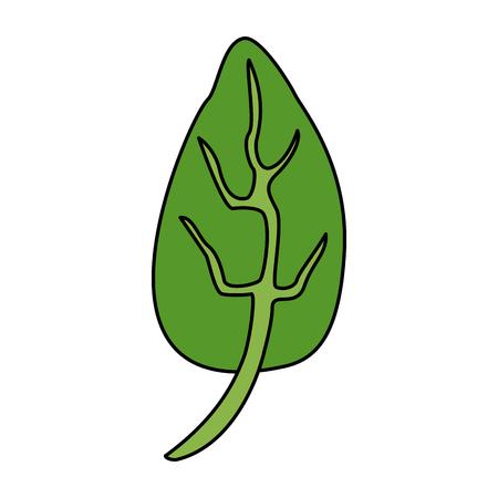 single leaf icon image vector illustration design Illustration