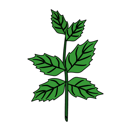 leaves with stem icon image vector illustration design Illustration