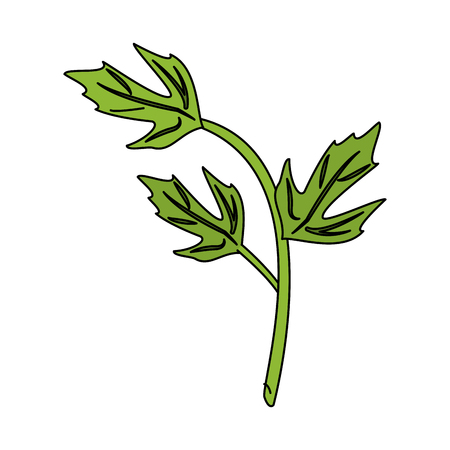 leaves with stem icon image vector illustration design Illustration