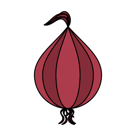 whole onion vegetable icon image vector illustration design