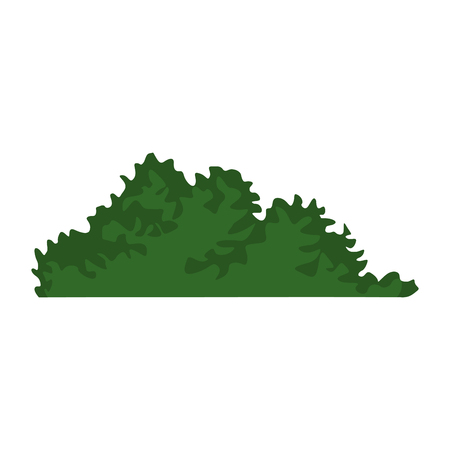 Bush leaves isolated icon vector illustration graphic design Illustration