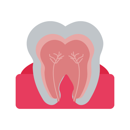 Molar tooth inside dentistry icon image vector illustration design Illustration