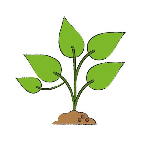 Plant on ground icon vector illustration graphic design