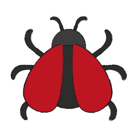 ladybug: Cute Ladybug isolated icon vector illustration graphic design Illustration