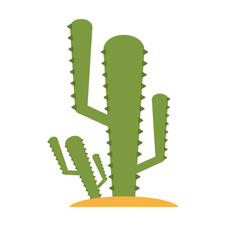 cactus plant icon image vector illustration design