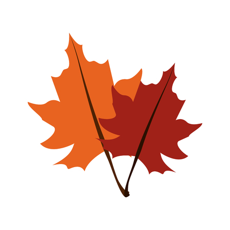 fall leaves icon image vector illustration design