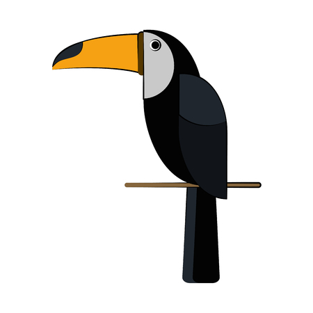 flocks: toucan tropical bird icon image vector illustration design